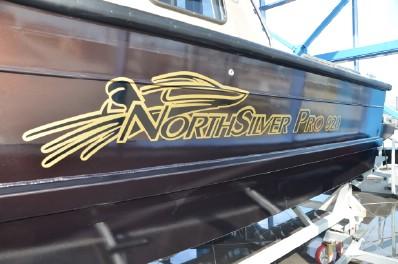 NorthSilver PRO 920 M